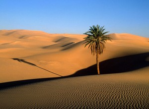 desertul-sahara